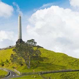 Découvre nos programmes adultes pour ton séjour à Auckland