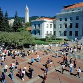 Découvre nos programmes adultes pour ton séjour à San Francisco Berkeley