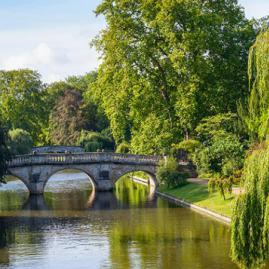 Découvre nos programmes adultes pour ton séjour à Cambridge