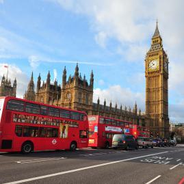 Découvre nos programmes adultes pour un séjour en immersion au Royaume-Uni.
