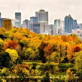 Découvre nos programmes adultes pour ton séjour à Montreal