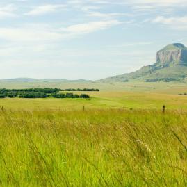 Découvre nos destinations en Afrique du Sud